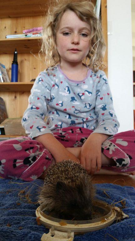 """Jolan and our pet Hedgehog """"Hog"""""""