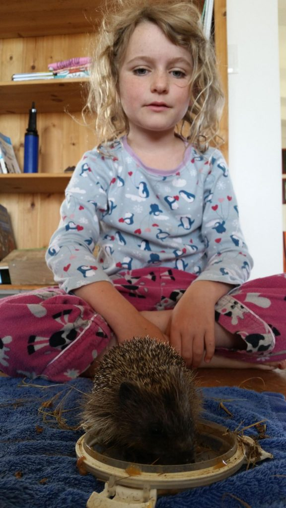 "Jolan and our pet Hedgehog ""Hog"""