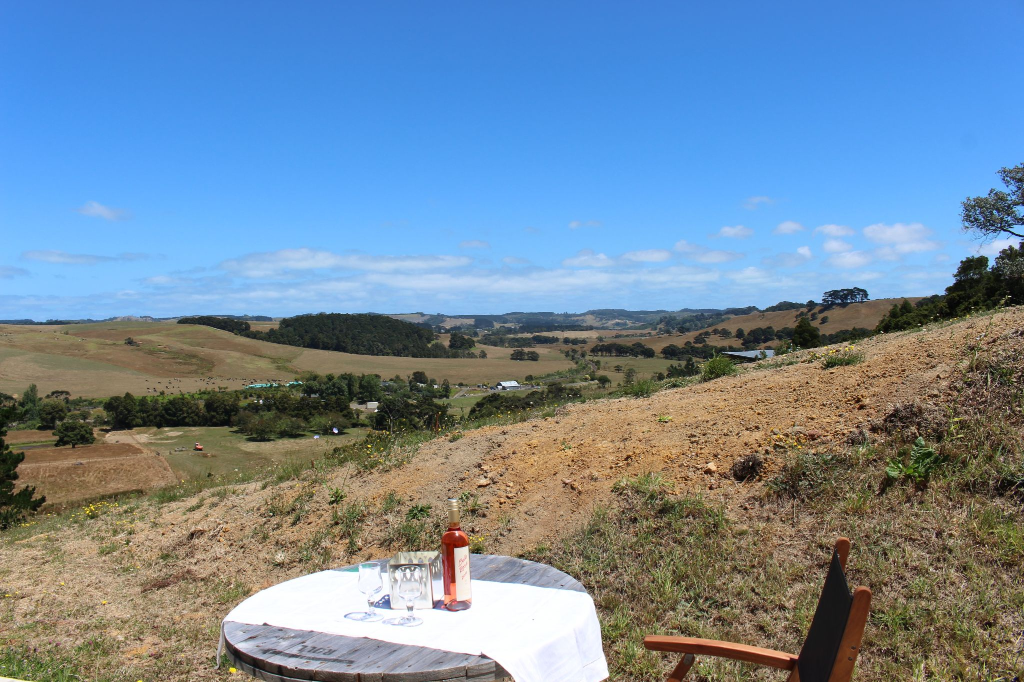 View of the Kaipara valley from the B&B patio