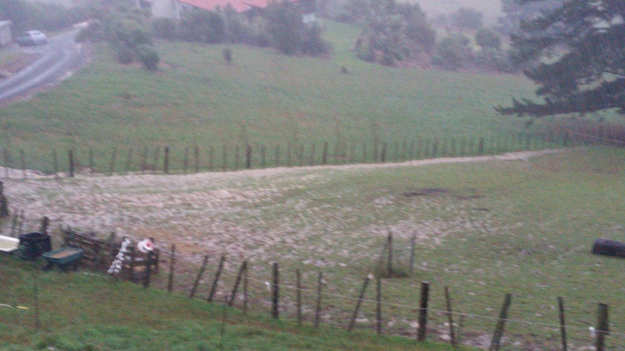 Water coming down driveway and up from the other paddocks