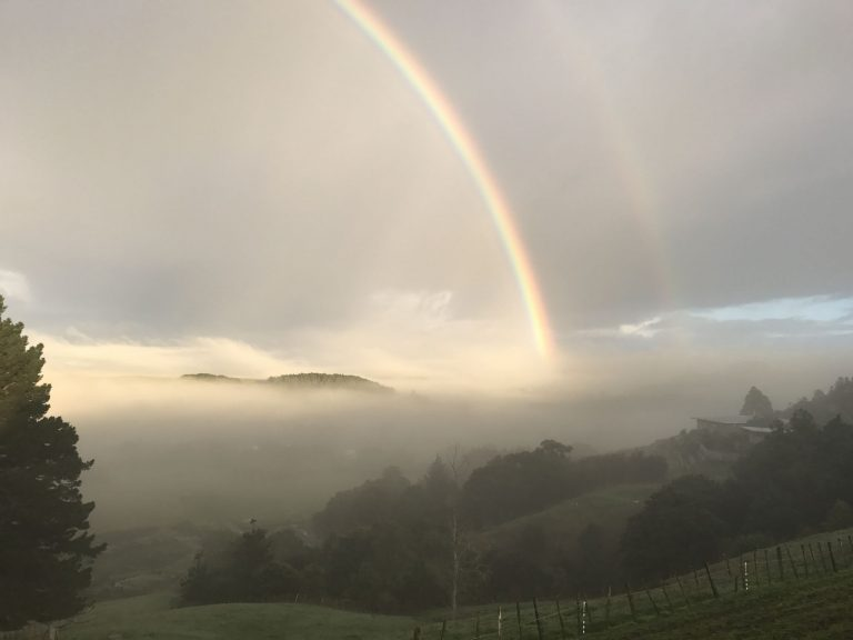 A rainbow rising through the fog at our place this morning