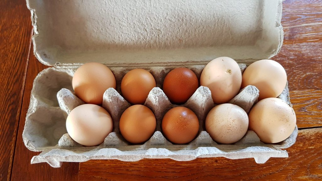 Battery and our free range eggs in comparison