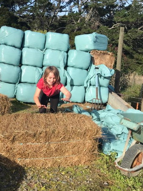 Little girl pushing straw bales