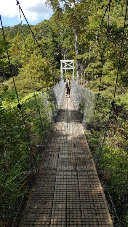 Hanging bridge on steel wires and wooden walkway