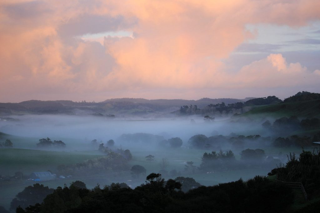 Pink clouds over a valley covered in fog with trees sticking out of the fog