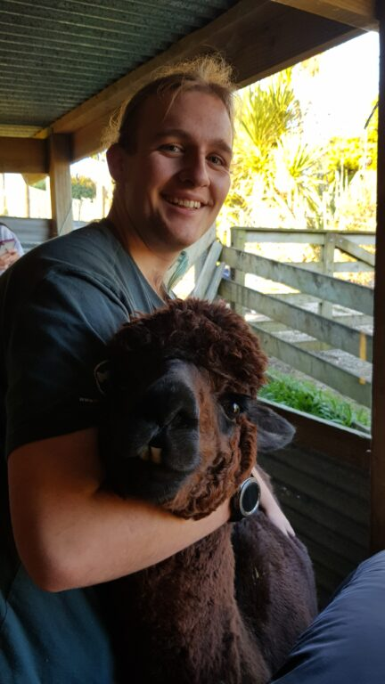 Person holding a rather fluffy alpaca head