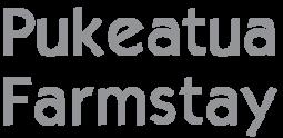Pukeatua font grey