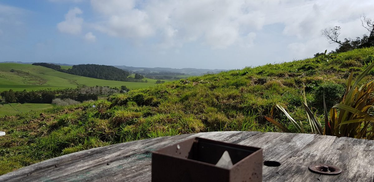 View into the distance across the Kaipara river valley with trees and some sheds in the very far distance